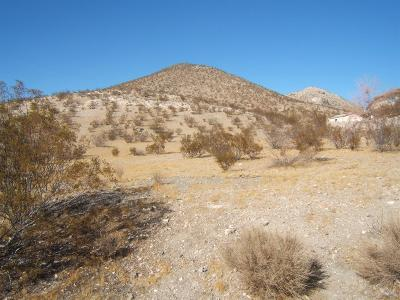 Apple Valley Residential Lots & Land For Sale: Muni Road