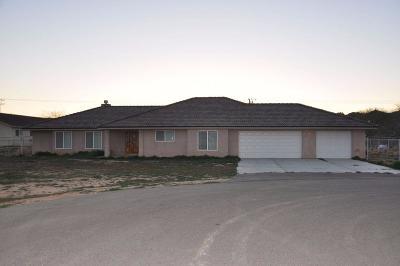 Apple Valley Single Family Home For Sale: 15616 Winnebago Road