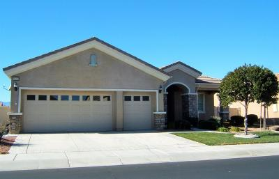 Apple Valley Single Family Home For Sale: 10330 Wilmington Lane