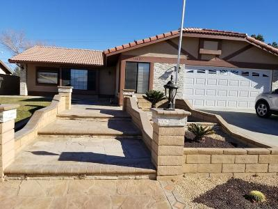 Victorville Single Family Home For Sale: 15609 Chaparral Street