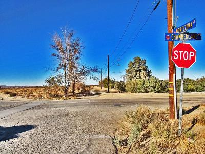 Adelanto Commercial Lots & Land For Sale: Chamberlaine Way