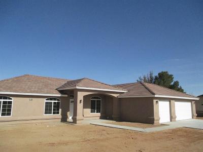 Hesperia Single Family Home For Sale: 17768 Mesa Street