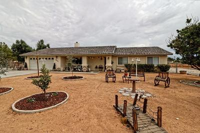 Apple Valley Single Family Home For Sale: 15001 Ramona Road