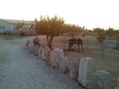 Pinon Hills Single Family Home For Sale: 10180 Wintergreen Road
