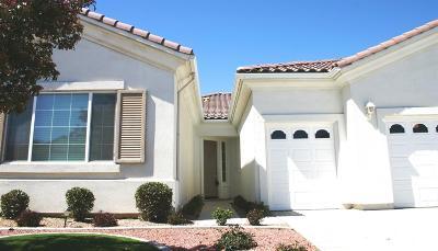 Apple Valley Single Family Home For Sale: 11006 Rockaway Glen Road