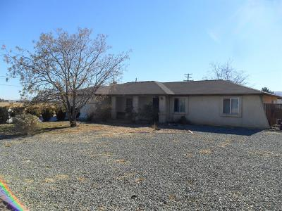 Apple Valley Single Family Home For Sale: 21491 Pahute Road