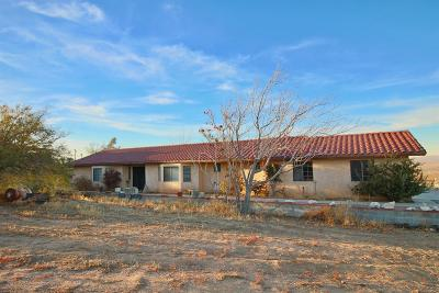 Apple Valley Single Family Home For Sale: 23888 Mountain View Road