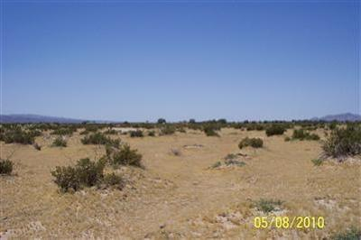Newberry Springs Residential Lots & Land For Sale: Fort Cady Road