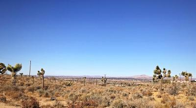 Apple Valley Residential Lots & Land For Sale: 23777 Poppy Road
