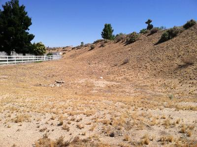 Apple Valley Residential Lots & Land For Sale: 19190 Saddle Lane