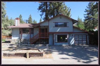 Wrightwood Single Family Home For Sale: 910 Evergreen Road