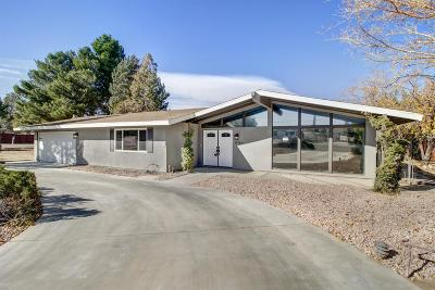 Hesperia Single Family Home For Sale: 17760 Sultana Street