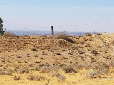 Apple Valley Residential Lots & Land For Sale: 9576 Mesa Vista Street
