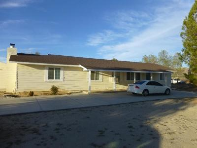Apple Valley Single Family Home For Sale: 21424 Zuni Road