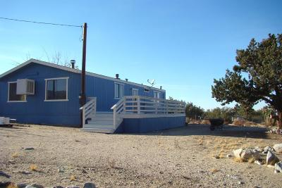 Pinon Hills Single Family Home For Sale: 10581 Golden View Road