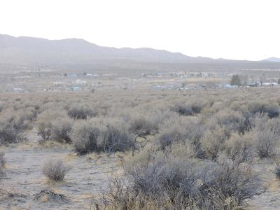 Lucerne Valley Residential Lots & Land For Sale: Alamo Avenue