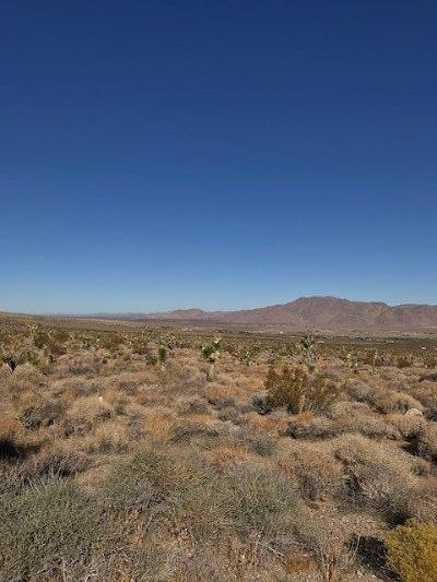 Lucerne Valley Residential Lots & Land For Sale: Powerline Road