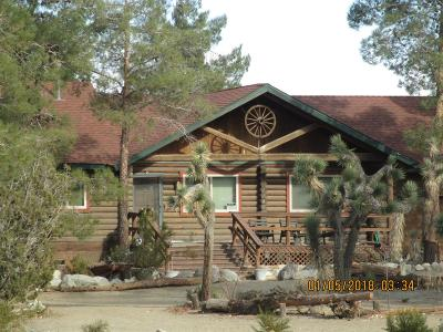 Pinon Hills Single Family Home For Sale: 11487 Oasis Road
