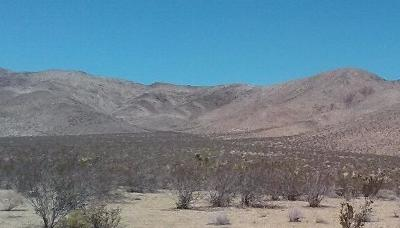 Lucerne Valley Residential Lots & Land For Sale: Jay Jay (Near) Road