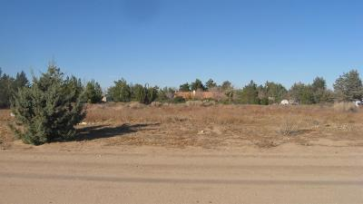 Hesperia Residential Lots & Land For Sale: Ash Street