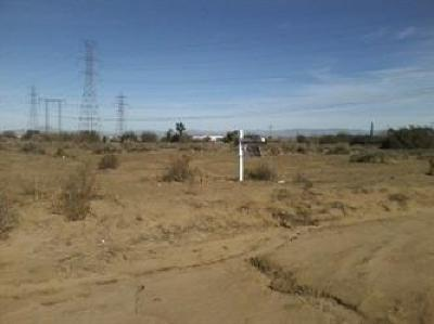 Hesperia Residential Lots & Land For Sale: Cactus Street