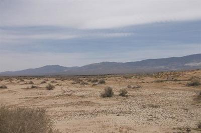 Lucerne Valley Residential Lots & Land For Sale: Rodeo Road