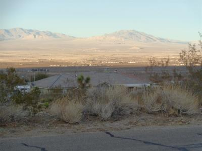 Lucerne Valley Single Family Home For Sale: 32323 Emerald Road