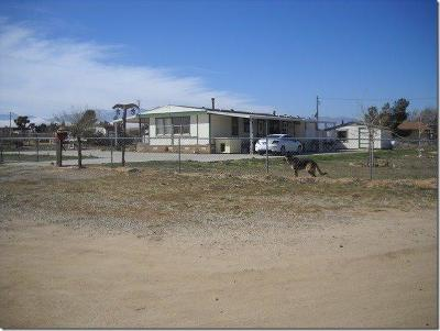 Victorville Single Family Home For Sale: 11124 Baldy Mesa Road
