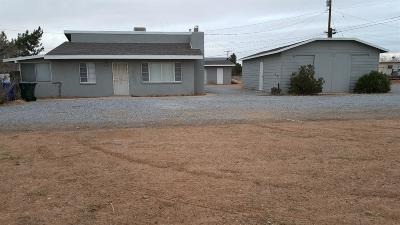 Apple Valley Single Family Home For Sale: 21338 Wren Street