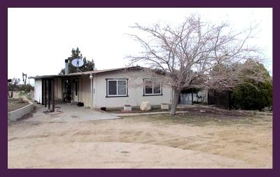 Pinon Hills Single Family Home For Sale: 2888 Hermosa Road