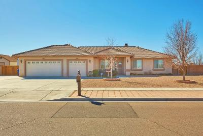 Apple Valley Single Family Home For Sale: 21871 Cholena Road
