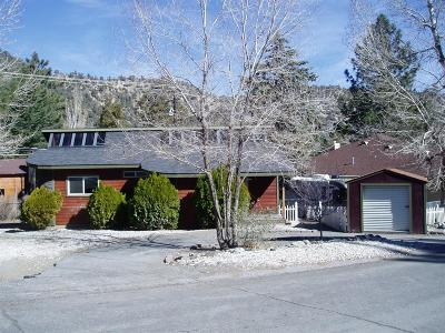 Wrightwood Single Family Home For Sale: 724 Apple Avenue
