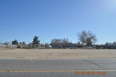 Victorville Single Family Home For Sale: 13159 Seneca Road