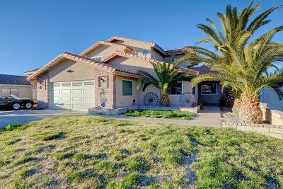 Victorville Single Family Home For Sale: 17890 Cumberland Way
