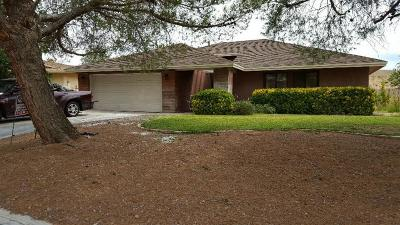 Helendale Single Family Home For Sale: 13905 Topmast Lane