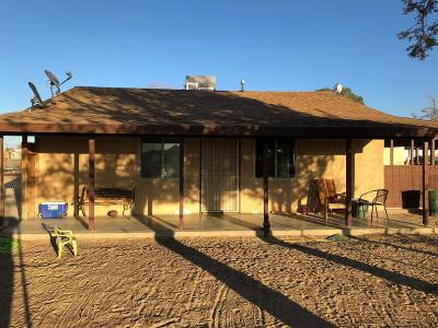 Lucerne Valley Single Family Home For Sale: 10667 Godwin Road
