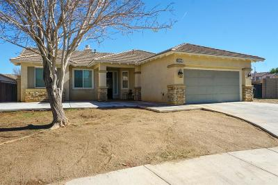 Adelanto Single Family Home For Sale: 14517 Indian Paintbrush Road