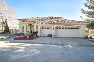 Apple Valley Single Family Home For Sale: 23585 Resoto Road