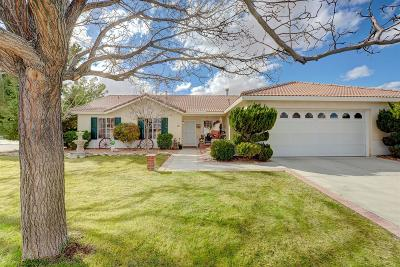 Victorville Single Family Home For Sale: 12312 Durango Court