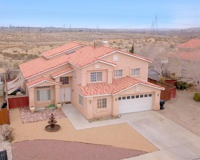 Victorville Single Family Home For Sale: 17098 Jurassic Place