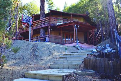 Wrightwood Single Family Home For Sale: 5188 Lone Pine Canyon Road