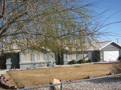 Hesperia Single Family Home For Sale: 15794 Willow Street