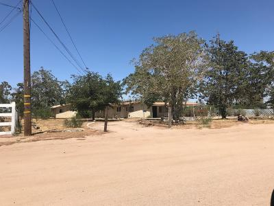 Hesperia Single Family Home For Sale: 15000 Elm Street