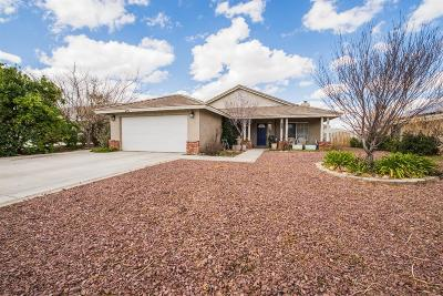 Hesperia Single Family Home For Sale: 7174 Amanda Way