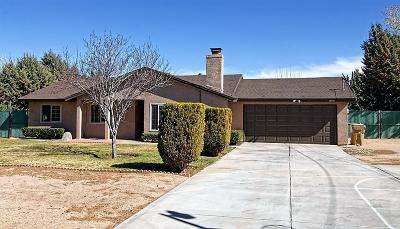 Hesperia Single Family Home For Sale: 10735 Lincoln Avenue