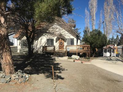 Wrightwood Single Family Home For Sale: 5321 Chaumont Drive