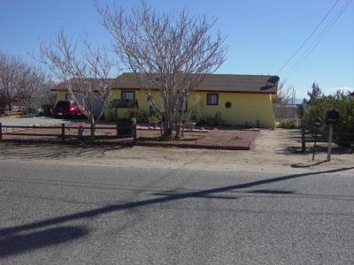 Hesperia Single Family Home For Sale: 18393 Catalpa Street