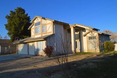 Victorville Single Family Home For Sale: 13229 Snowview Road