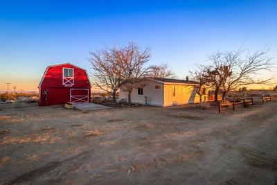 Pinon Hills Single Family Home For Sale: 11927 Oasis Road