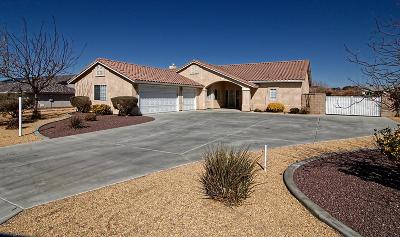 Apple Valley Single Family Home For Sale: 13490 Paraiso Road